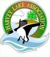 Harvey Lake Association